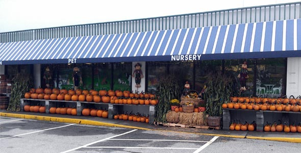 Montpelier Store Front