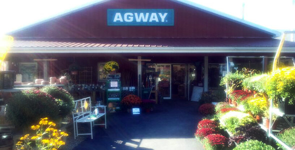 Chatham Agway Store Front