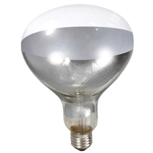 Little Giant Clear 250 Watt Brooder Bulb