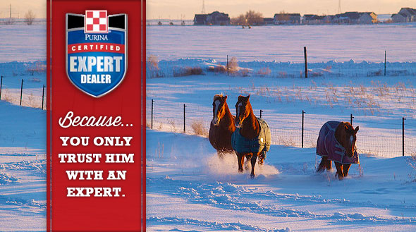 Certified Expert Dealer Equine