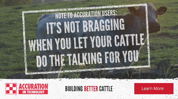 Purina Sustained Cattle Nutrition