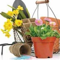 Gardening Tool Gift Bouquet