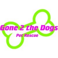 Gone 2 The Dogs Pet Rescue Adoption Event