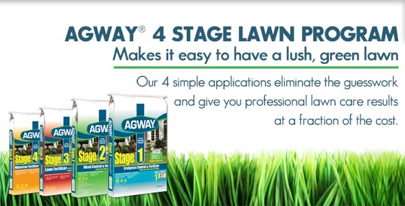 March Agway 4 Stage Lawn slide