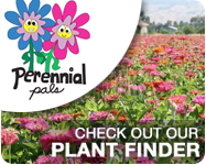 Check out our Perennial Pals Plant Finder!