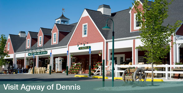 Agway of Dennis