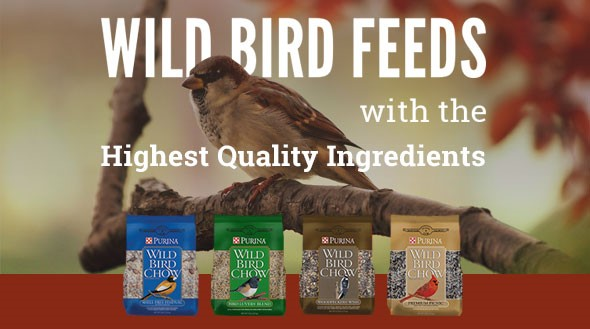 wild bird chow ad