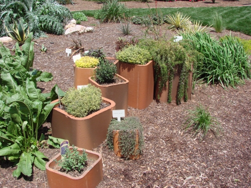 Green College Class: Xeriscaping