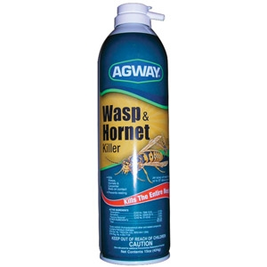 Agway Wasp & Hornet Killer Only $2.99