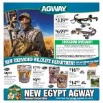 Agway Flyer