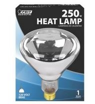 Clear Heat Lamp Bulb  For $1.99