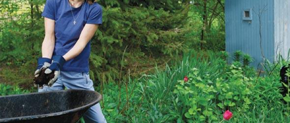 Fall Backyard Cleanup : Fall Garden Clean Up is Spring Preparation  Binghamton Agway