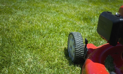 Lawn or Garden Equipment Special!