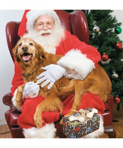FREE Pet Photos with Santa