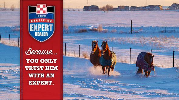 Equine Expert Dealer