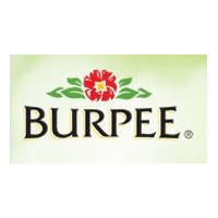 50% Off a Pack of Burpee Seeds
