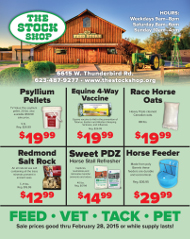 Stock Shop Monthly Ad