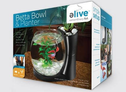 Betta Bowl & Planter
