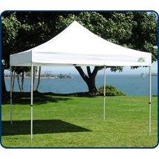 Caravan Traveler 10X10  Pop-Up Canopy