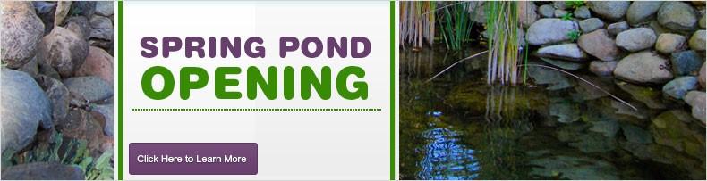 Spring Pond Opening