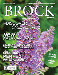 brock 2015