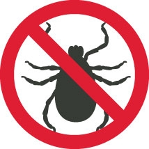 """Deer Ticks: """"One Bite Can Change Your Life…"""""""
