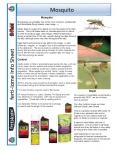 Mosquito Info Sheet