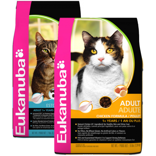 Eukanuba Cat Food
