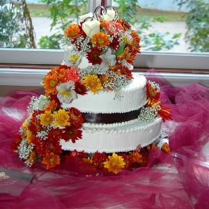 Carolina Wedding Show: Greensboro