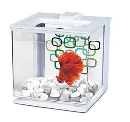 Marina Betta EZ Care Aquarium - White