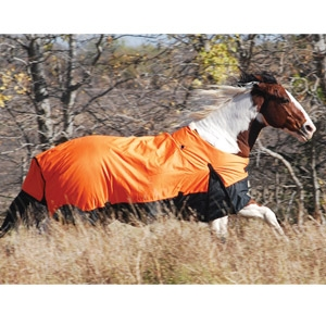 Ozark Horse Blankets 60
