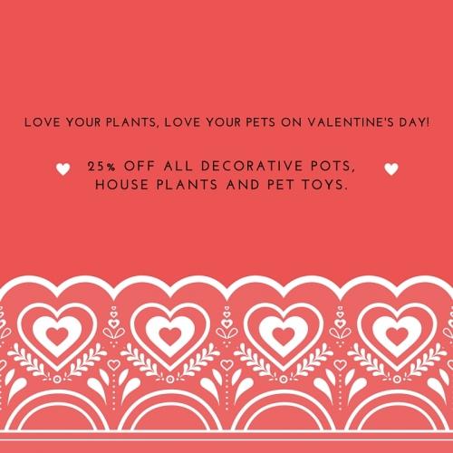 25% Off Decorative Pots, House Plants & Pet Toys