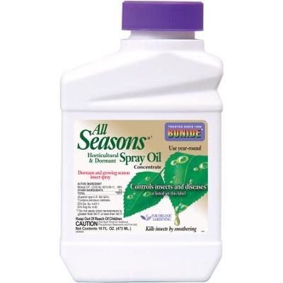 Calendar Coupon: All Seasons Oil