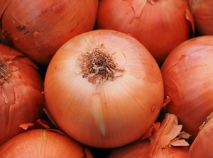 View our onion vareties