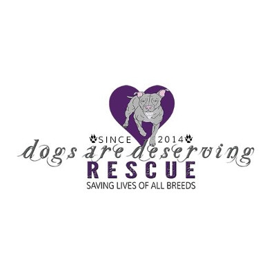 Dogs Are Deserving Adoption Event