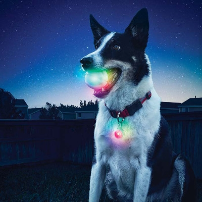 Nite Ize Glowstreak LED Ball for Pets