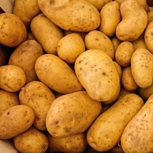 Potato Sets