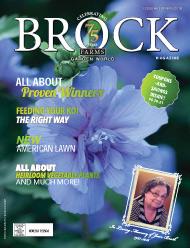 brock 2016