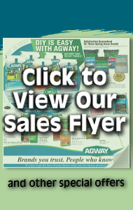 Click to view our Sales Flyer