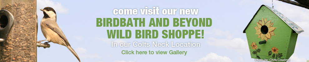 Come see our new Birdbath and Beyond Wild Bird Shoppe in our Colts Neck Location