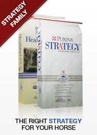 Purina Strategy Equine Feed