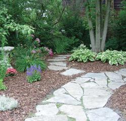 back Yard Stone Walkway