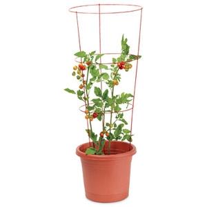 葫芦盆栽种植方法图解