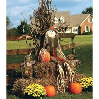 10/17: Build Your Own Scarecrow