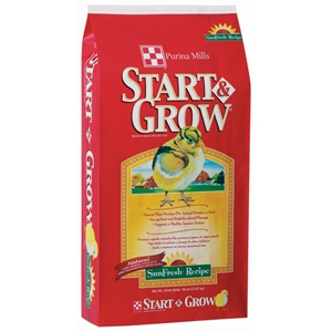 6 Gold Sexlink P. & 5lb of Start & Grow for $18.99