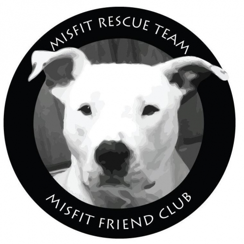 Misfit Rescue Team Adoption Event