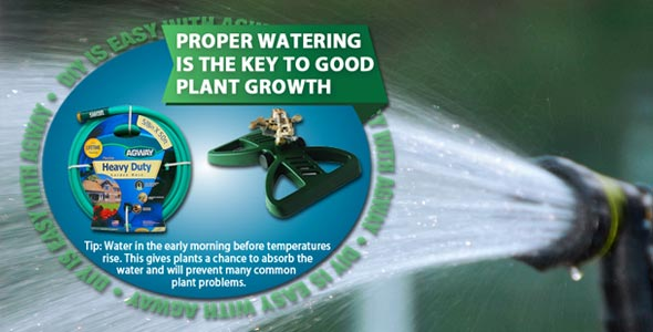 proper watering is key to good plant growth