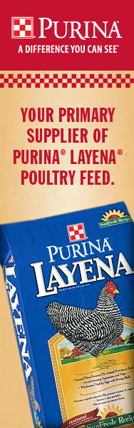 Layena SunFresh Recipe