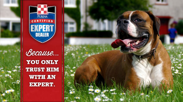 Companion Certified Expert Dealer Slider